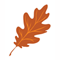Leaf_60